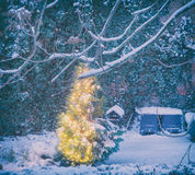Lit christmas tree with snow Royalty Free Stock Photo
