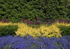 Lit coloré Dallas Arboretum et jardin botanique photographie stock