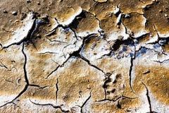 Lit d'assèche avec la texture naturelle de l'argile criqué dans la perspective Photographie stock