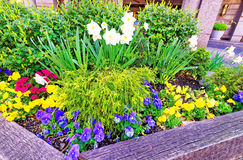 Lit de fleur au centre de la ville de Philadelphie Images libres de droits