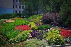 Lit de fleur au centre de la ville images stock