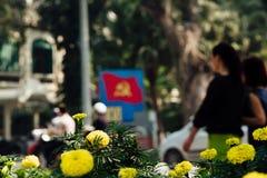 Lit de fleur avec les fleurs jaunes à l'arrière-plan la ville et Images stock