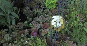 Lit de fleur décoratif avec des hémisphères banque de vidéos