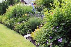 Lit de fleur de jardin Photographie stock libre de droits
