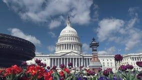 Lit de fleur devant nous bâtiment de capitol à Washington photos libres de droits