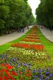 Lit de fleur en parc Images stock