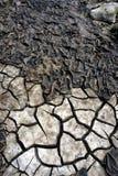 Lit de la rivière 2 de sécheresse Image libre de droits