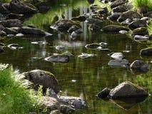 Lit de la rivière Photos stock