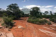 Lit de la rivière après pluie images libres de droits