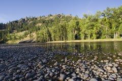 Lit de la rivière avec des cailloux dans le soleil de soirée photos libres de droits