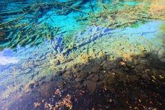Lit de la rivière de paon, Jiuzhaigou, au nord de province de Sichuan, la Chine image libre de droits