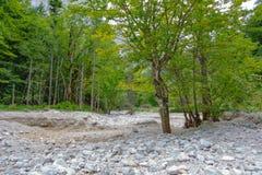 Lit de la rivière sec de montagne Images stock