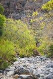 Lit de la rivière Wadi Bani Habib Photographie stock libre de droits