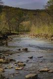 Lit de rivière par Ozark Mountains en ressort très premier photographie stock libre de droits
