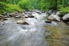 Lit de rivière Photos libres de droits