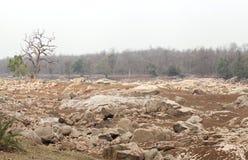 Lit de rivière de Pench dans la réservation de tigre de pench Images stock