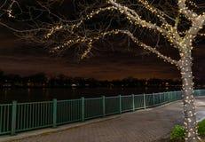 Lit del parque de la ciudad para la Navidad Imagen de archivo libre de regalías