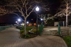 Lit del parque de la ciudad para la Navidad Fotos de archivo