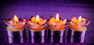 Lit flower shaped candles Stock Image