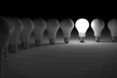 Lit light bulb. One lit light bulb amongst other broken light bulbs Vector Illustration