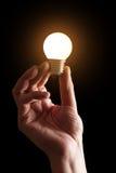 Lit lightbulb Royalty Free Stock Image