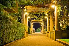 Lit walkway at night. Surrounded by greenery Royalty Free Stock Photos