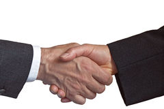 litat på handskakningpartnerskap Royaltyfria Bilder