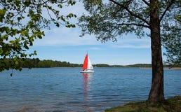 Litauen sjö Arkivfoto