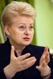 Litauischer Präsident Dalia Grybauskaite Stockfotos