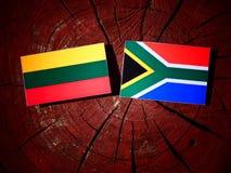 Litauisk flagga med söder - afrikansk flagga på en isolerad trädstubbe Arkivbild