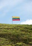 Litauisk flagga på himmelbakgrund Royaltyfri Fotografi