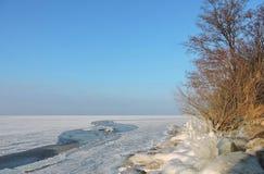 Litauiskt vinterlandskap royaltyfria bilder