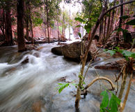 Litchfield National Park. Waterfalls in Litchfield National Park Stock Images