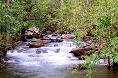 Litchfield National Park. Waterfalls in Litchfield National Park Stock Photos