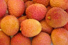 Litchi 01 Stock Photography