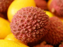 Litchi Royalty Free Stock Photo
