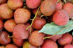 Litchi frais avec des feuilles Images stock