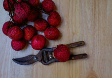 Litchi Stock Images