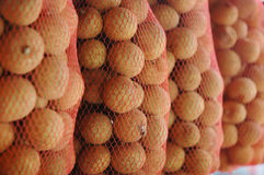 Litchi fruit Royalty Free Stock Image