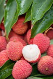 Litchi fruits Stock Image