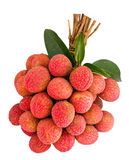 Litchi isolated. Bunch of litchi isolated on white Royalty Free Stock Photo