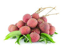 Litchi isolated on white background Stock Photos