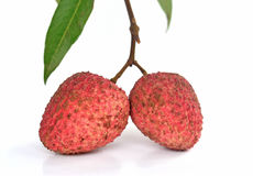2 Litchi on white isolate background Royalty Free Stock Photo