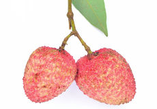 2 Litchi  on white isolate background Stock Photos