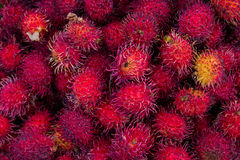 Litchiplommonet bär frukt i den Chichicastenango marknaden Royaltyfri Fotografi