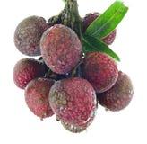 Litchiplommonfrukt med sidor på vit bakgrund Arkivfoto