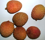 Litchis Photos stock
