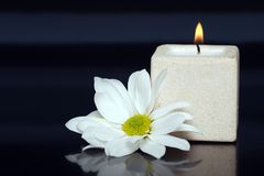 Lite candle with a daisy Royalty Free Stock Photography