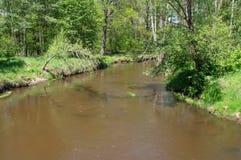 Lite flod Royaltyfri Foto