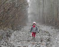 Lite går barnet till och med skogen royaltyfri foto
